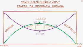 etapas da biografia humana